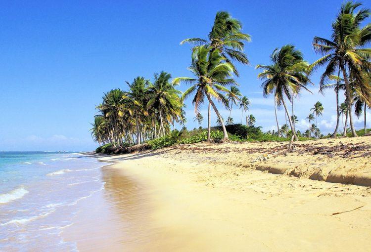 Tumbonas playa